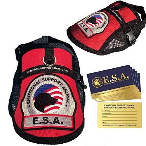 "Premium Emotional Support Dog ESA Mesh Vest (9"" - 13"" Girth, Red) - Includes 5 Federal Law ESA Handout Cards"