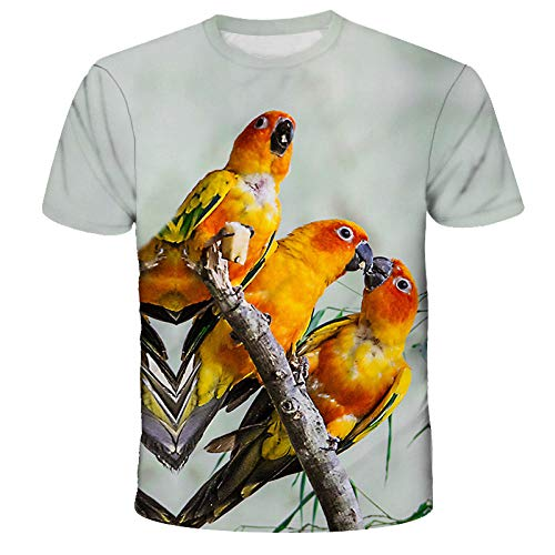 Camiseta pájaro T-Shirt Manga Corta para Hombre