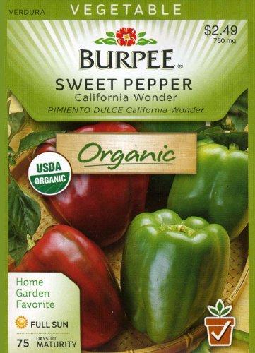 Burpee Pepper California Wonder 60520 (Red to Green) 100 Organic Seeds