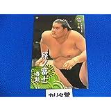 BBM2014大相撲カード 「照ノ富士」十両時代です。