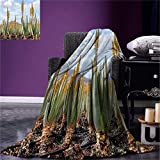 LYDXD Manta de Plantas Foto de plantación de Aloe Vera Hojas medicinales...