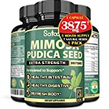 Pure Mimosa Pudica Seed Extract Capsules - 5 Month Supply - Extra 6 Essential Ingredients Equivalent to 3875mg - Support Healthy Digestion, Immune and Body - 150 Vegan Capsules
