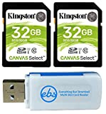 Kingston 32GB SD Memory Card (2 Pack) Canvas Select SDHC Card Class 10 UHS-1 (SDS/32GB) Bundle with (1) Everything But Stromboli SD & Micro Card Reader