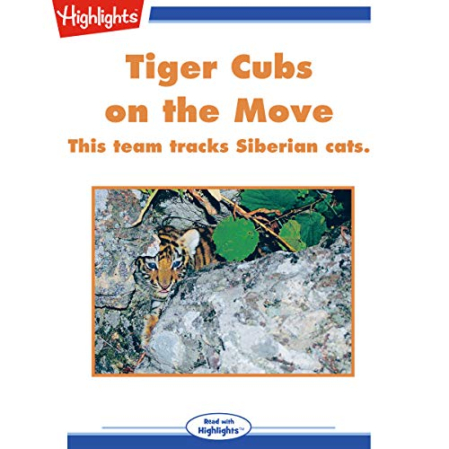 Tiger Cubs on the Move copertina