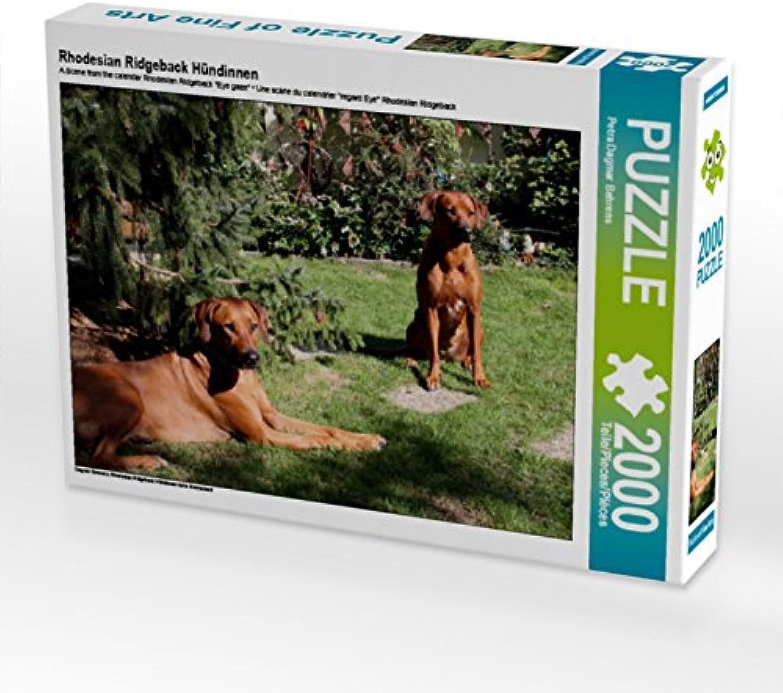 CALVENDO Puzzle Rhodesian Ridgeback Hündinnen 2000 Teile Lege-Größe 90 x 67 cm Foto-Puzzle Bild von Petra Dagmar Behrens B07DJRNLBG Am wirtschaftlichsten | Billig