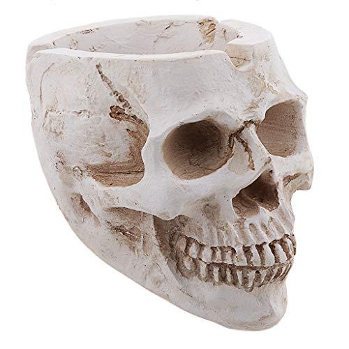 SM SunniMix Cendrier Crâne Squelette Humain Extérieur Gothique Bureau à Domicile Ornement De Bureau