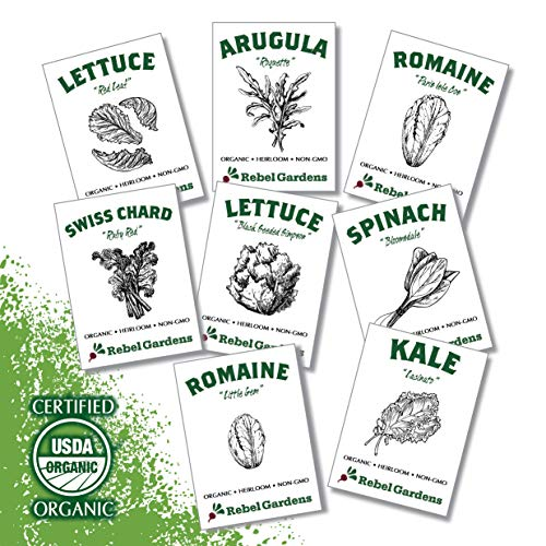 Organic Garden Greens Vegetable Seeds - 8 Varieties of Heirloom, Non-GMO Salad Green Seeds - Lettuce, Arugula, Swiss Chard, Kale, and Spinach