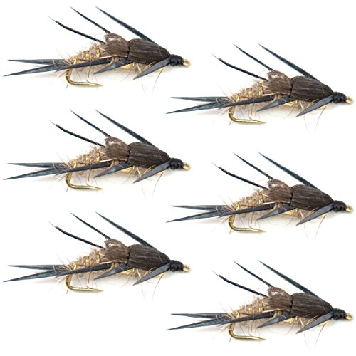 The Fly Fishing Place Double Bead Gold Ribbed Hares Ear Nymph Fly Fishing Flies Trout and Bass Wet Fly Pattern 6 Flies Hook Size 10