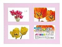 Chikuma フォトスタンド UclidマットEX L判4面  ピンク 18650-2