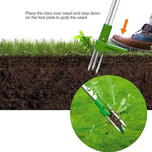 Weed Puller, Stand Up Weeder Hand Tool, Long Handle Garden Weeding Tool with 3 Claws, Hand Weed Hound Weed Puller for Dandelion, Standup Weed Root Pulling Tool and Picker, Grabber(Need to assemble)