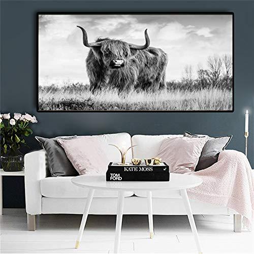 QWEWQE Highland - Lienzo de vaca, impresión sobre lienzo, diseño de vaca salvaje, póster de animales nórdicos, decoración para el salón, sin marco (30 x 50 cm, sin marco B)