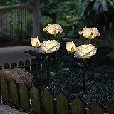 Solar Garden Lights Outdoor Decorative Rose Flowers Lights LED Color Changing Solar Stake Lights Waterproof for Garden, Backyard Decoration (White)