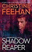 Shadow Reaper (A Shadow Riders Novel)