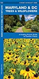 Maryland & DC Trees & Wildflowers: A Folding Pocket Guide to Familiar Plants (Wildlife and Nature Identification)