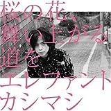 桜の花、舞い上がる道を 歌詞