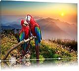 Papageien Pärchen Format: 120x80 auf Leinwand, XXL riesige