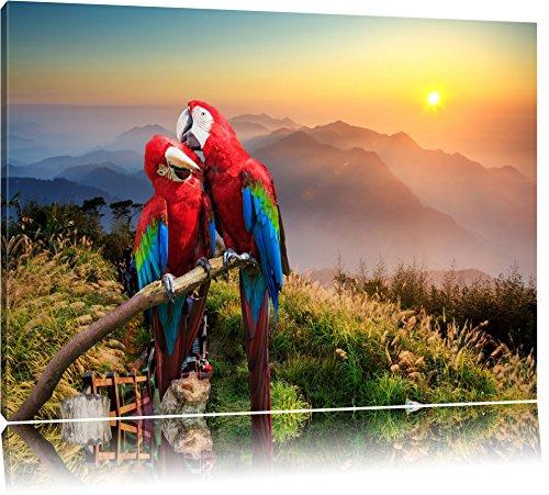 Papageien Pärchen Format: 80x60 auf Leinwand, XXL riesige Bilder fertig gerahmt mit Keilrahmen, Kunstdruck auf Wandbild mit Rahmen, günstiger als Gemälde oder Ölbild, kein Poster oder Plakat