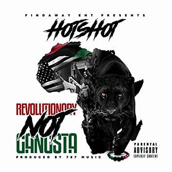 Revolutionary Not Gangsta