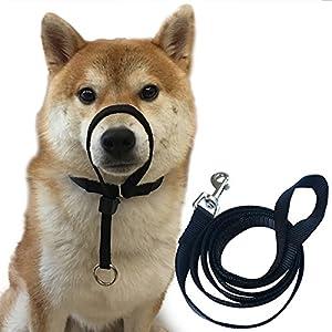 Collier de dressage pour chien avec laisse, Sans douleur pour le chien lorsqu'il tire sure sa laisse
