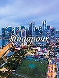 Zoom sur Singapour