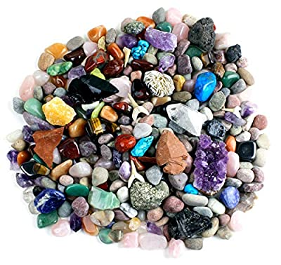Dancing Bear Rock & Mineral Collection Activity Kit (200 Pc Set) with Meteorite, Real Shark Teeth Fossils, Arrowheads, Crystals, Gemstones, Treasure Hunt ID Sheet, STEM Science Education, Made in USA