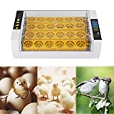 Egg Incubator with Automatic Turner, 24 Eggs Fully Automatic Incubator with Digital Temperature Humidity Display Alarm System for Chickens Ducks Goose Birds Parrot Quail
