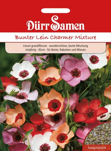 Dürr Samen 0996 Bunter Lein Charmer Mischung (Leinsamen)