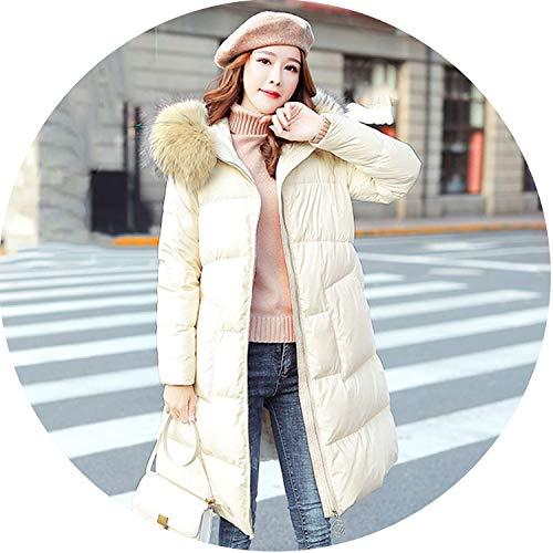 Ablaze Jin Daunenjacke für Damen, natürlicher Waschbär, F-Kragen - beige - X-Groß