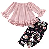 Toddler Little Baby Girls Outfits Ruffled Flare Tunic Top and Floral Leggings Pants Clothes Set (Pink, 3-4 T)