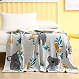 Whale Flotilla 100% Cotton Knit Throw Blanket, Soft Kids Cartoon Throw Blanket for Bedding, Couch and Sofa, 50 x60 Inch (Koalas)