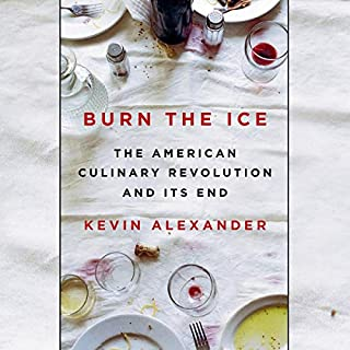 Burn the Ice audiobook cover art