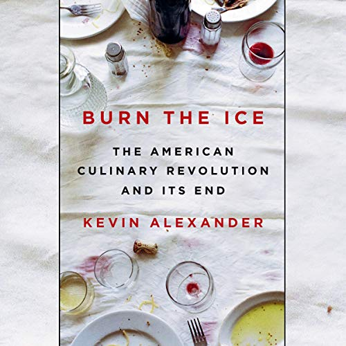 Burn the Ice audiobook cover art