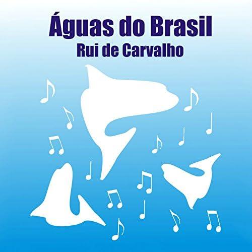 Rui De Carvalho