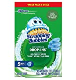 Product Image of the Scrubbing Bubbles Vanish Cleaner