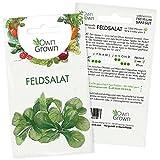 Feldsalat Samen Winterhart: Premium Feldsalat Saatgut für ca. 1000 Feldsalat Pflanzen – Samenfeste Gemüse Samen für die Anzucht in Garten und Hochbeet – Wintergemüse Samen – Samen Feldsalat OwnGrown