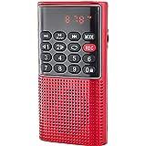 Haudang L-328 - Reproductor de MP3 portátil de bolsillo con radio FM para autoescaneo de música y reproductor de MP3, altavoz pequeño con grabadora de voz