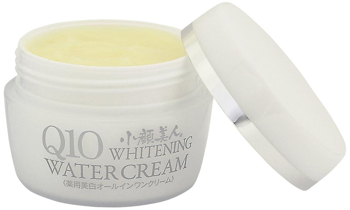 限界顕現刺繍小顔美人Q10ホワイトニングウォータークリーム80g
