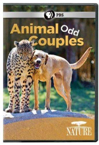 Nature: Animal Odd Couples