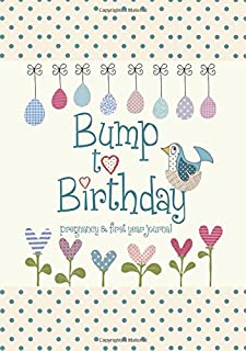 Bump to Birthday, Pregnancy & First Year Baby Journal : an award-winning journal / diary to help you hold onto memories of the growing bump, the birth & the first year with your baby