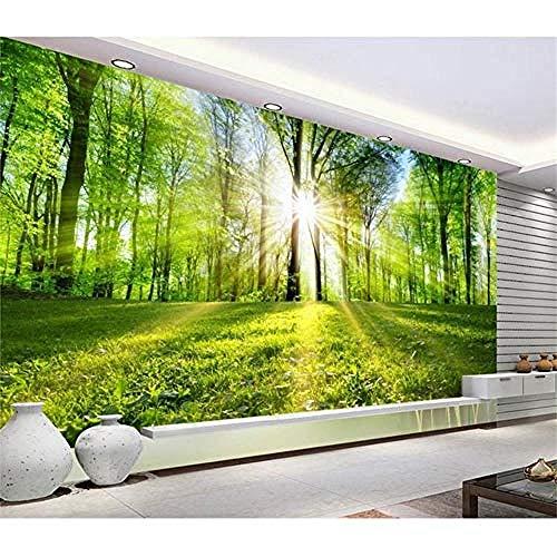 XHXI Benutzerdefinierte Wandtapete Wohnzimmer 3D-Fototapete Sonnenschein Wald Landschaft Foto Sofa TV Hintergrundwand Vlies Tapete fototapete 3d Tapete effekt Vlies wandbild Schlafzimmer-200cm×140cm