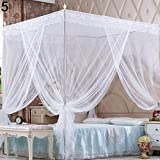 HWW-Net Zanzariera Princess Romantic Canopy Zanzariera No Frame for Twin Full Queen King Bed Zanzara (Color : Pink, Size : Full)
