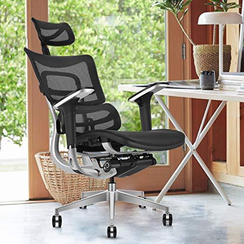 MOOJIRS Ergonomic Office Chair | Liftable Backrest Height Adj | Backrest Tilt Angle Adjustment | All-Mesh Design | Dynamic Lumbar | Seat Depth Adjustment | All-Aluminum Alloy Skeleton