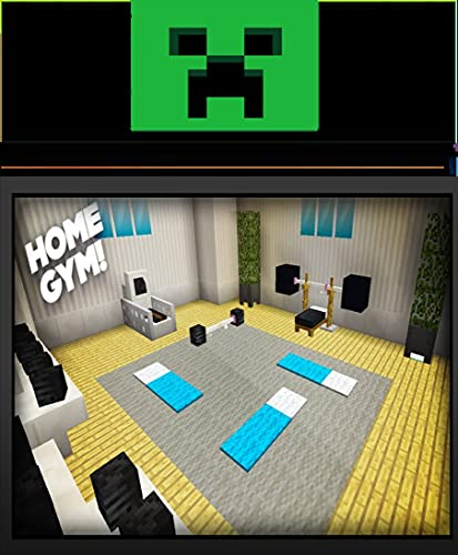 Minecraft How to : make a Gym (English Edition)