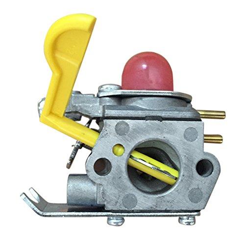 Blackr Craftsman Unkrautvergaser 530071752 530071822 Typ C1U-W18