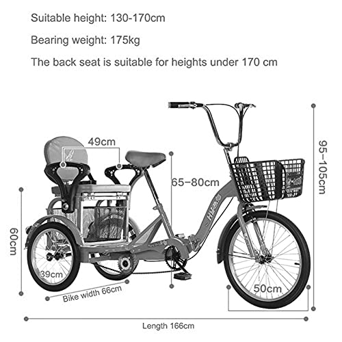 zyy Adult Tricycle 1 Speed Size Cruise Bike 16 Inch Adjustable Trike Foldable Tricycle with Basket for Adults and Bike Basket Exercise Bike for Recreation Shopping