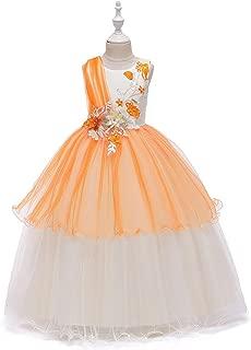 Luxury Children Princess Skirt Embroidered Gauze Dress Princess Dress Skirt Girls Sleeveless Wedding Dress Evening Dress Long Section of Mopping The Floor ryq (Color : Orange, Size : 110cm)