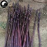 Acquista Viola asparagi vegetale Semi 120pcs impianto Buds Verdure Asparagus officinalis