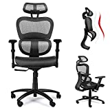 Ergousit Ergonomic Mesh Office Chair, High Back Computer Desk Chair with 3D Lumbar Support, Adjustable Armrest and Headrest, Breathable Home Office Chair, Executive Task Chair 300 lbs