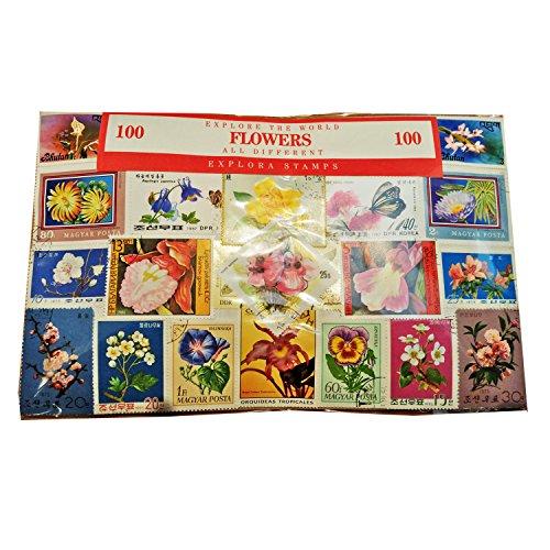 Collezione di 100 francobolli diversi con fiori e fauna di tutto il mondo Souvenir Francobolli da collezione da tutto il mondo Francobolli