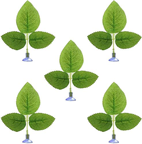 AUXPhome Lot de 5 hamacs Betta pour plantes et feuilles